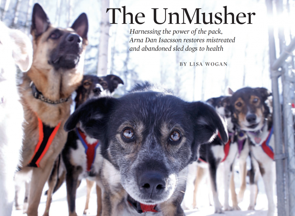 "Article about ""The UnMusher"" with photo of sled dogs"